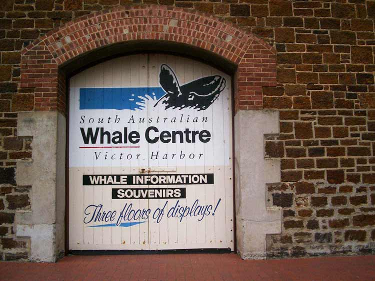 Whale Information Centre Victor Harbour, South Australia